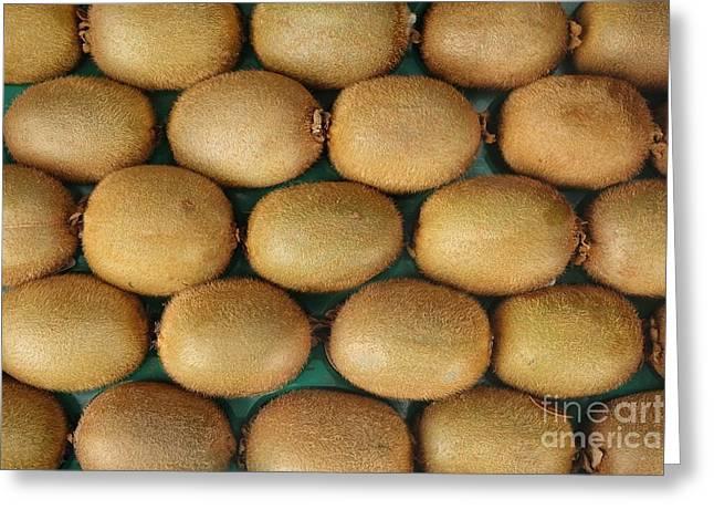 Kiwifruit Greeting Cards - Rows of Fresh Kiwifruits Greeting Card by Yali Shi