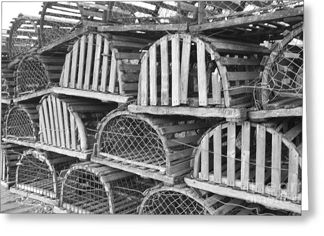 Art In Acrylic Greeting Cards - Rows of Old and Abandoned Lobster Traps Greeting Card by John Telfer