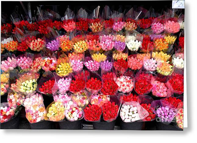 Valentine Greeting Cards - Rows of Roses Greeting Card by Amy Cicconi
