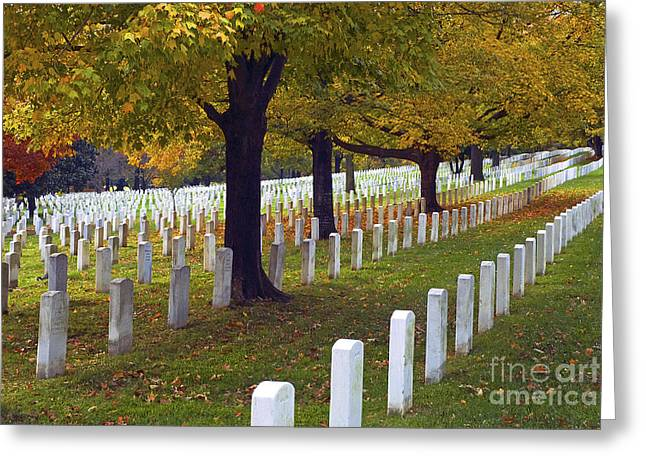 Arlington Greeting Cards - Rows of White Greeting Card by Paul W Faust -  Impressions of Light