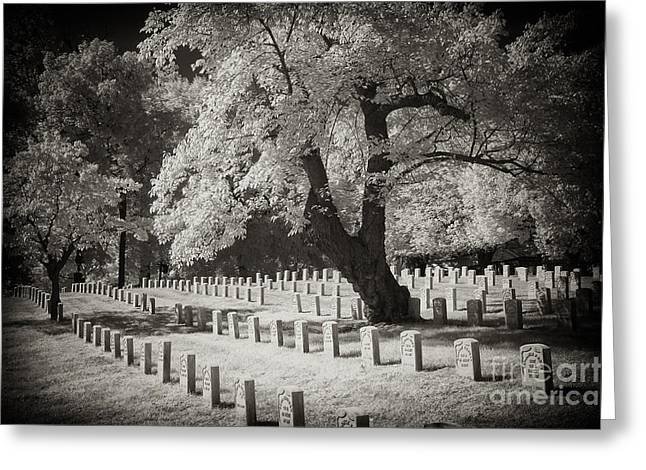 Arlington Greeting Cards - Rows of White Stones Greeting Card by Paul W Faust -  Impressions of Light