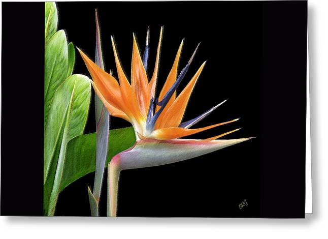 Royal Art Greeting Cards - Royal Beauty I - Bird Of Paradise Greeting Card by Ben and Raisa Gertsberg