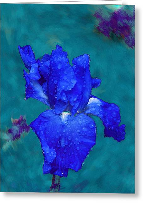 Royal Blue Iris Greeting Card by Viktor Savchenko