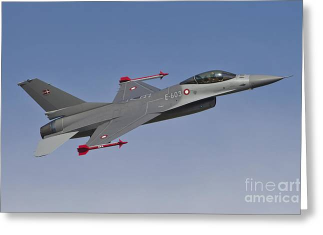 Danish Military Greeting Cards - Royal Danish Air Force F-16a Fighting Greeting Card by Timm Ziegenthaler