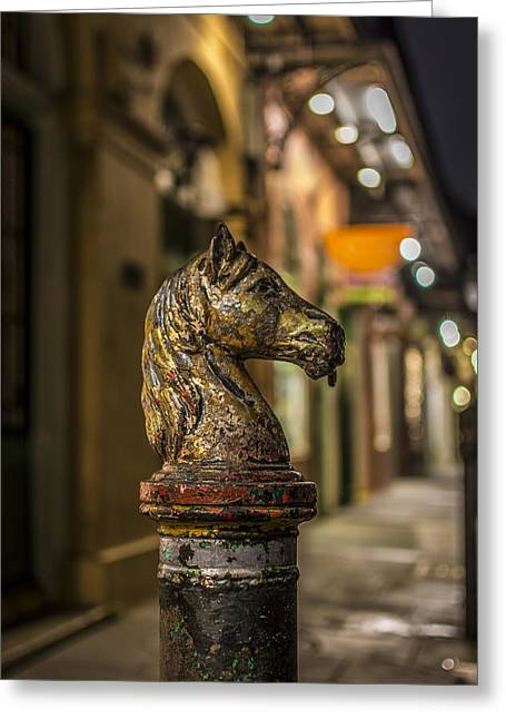 Night Photography Greeting Cards - Royal Knight Greeting Card by David Morefield