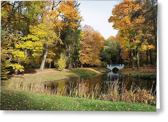 Royal Lazienki Park In Warsaw Greeting Card by Artur Bogacki