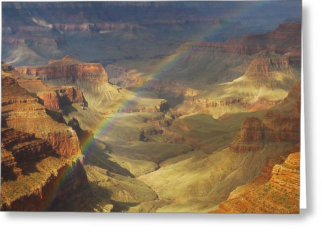 North Rim Greeting Cards - Royal Rainbow Greeting Card by Peter Coskun