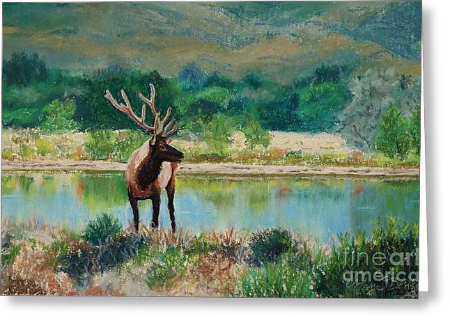 National Pastels Greeting Cards - Royal Velvet Greeting Card by Mary Benke