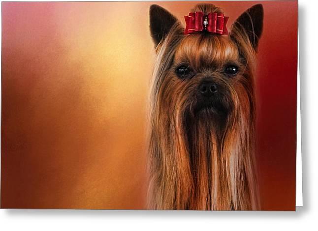 Dog Photo Greeting Cards - Royal Yorkshire Greeting Card by Jai Johnson