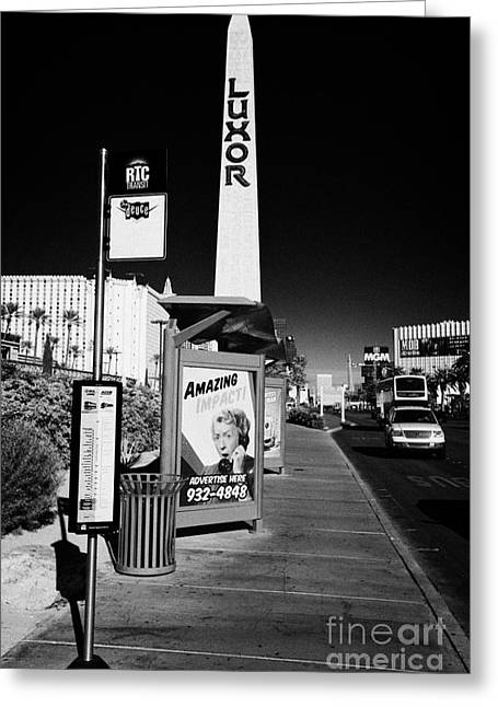 Busstop Greeting Cards - rtc deuce sdx bus stop outside the luxor hotel on Las Vegas boulevard Nevada USA Greeting Card by Joe Fox