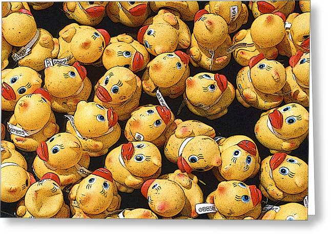 Rubber Ducky Greeting Cards - Rubber Duckies Annual Race for Charity Greeting Card by Rob Huntley