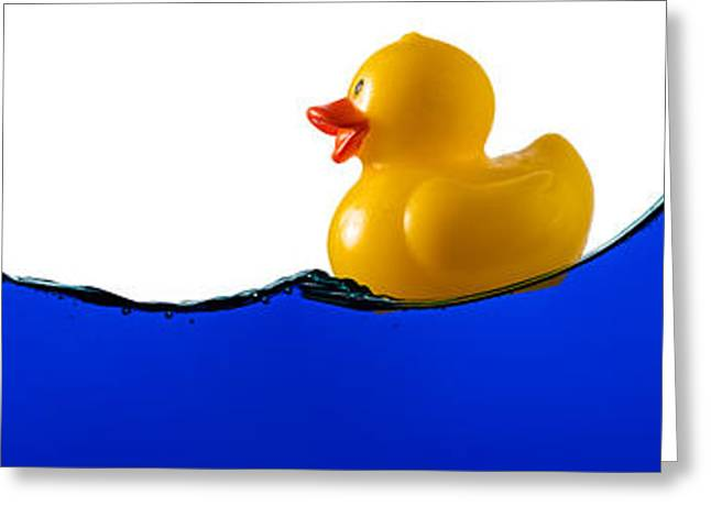 Rubber Ducky Greeting Cards - Rubber Ducky Rides A Wave Greeting Card by Steve Gadomski
