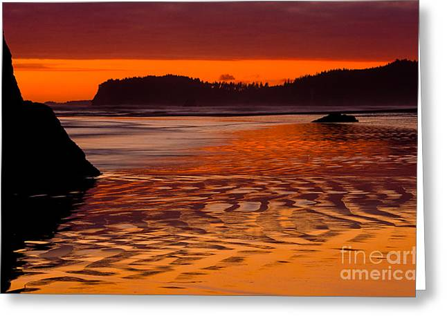 Reflective Greeting Cards - Ruby Beach Afterglow Greeting Card by Inge Johnsson