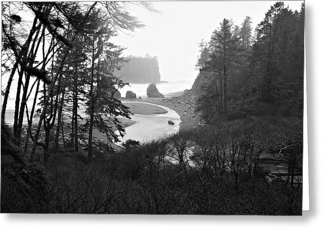 Ruby Beach In The Winter In Black And White Greeting Card by Jeanette C Landstrom