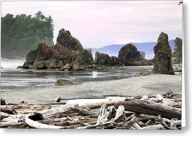 Ruby Beach - Olympic National Park Greeting Card by King Wu