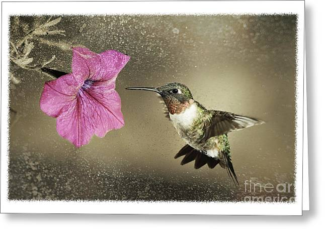 Ruby - D004190 Greeting Card by Daniel Dempster
