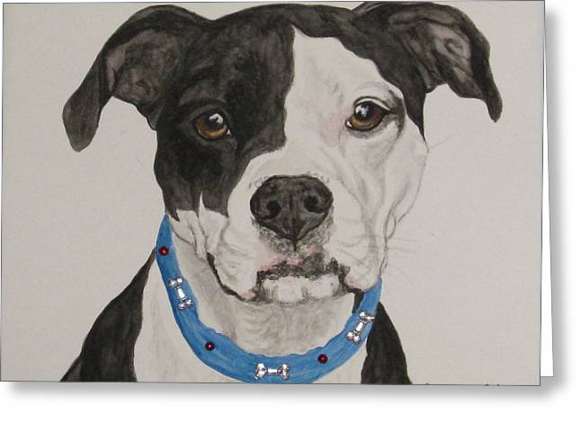 Pet Greeting Cards - Ruby Greeting Card by Megan Cohen
