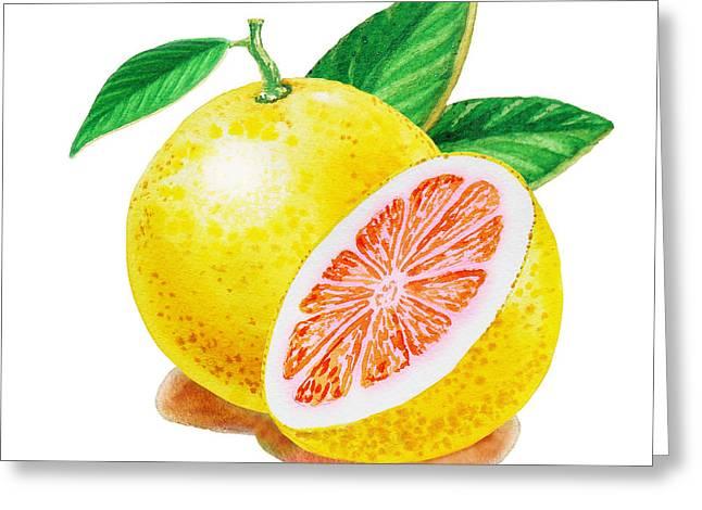 Ruby Red Grapefruit Greeting Card by Irina Sztukowski