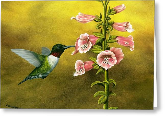 Foxglove Flowers Paintings Greeting Cards - Ruby Throated Hummingbird and Foxglove Greeting Card by Rick Bainbridge