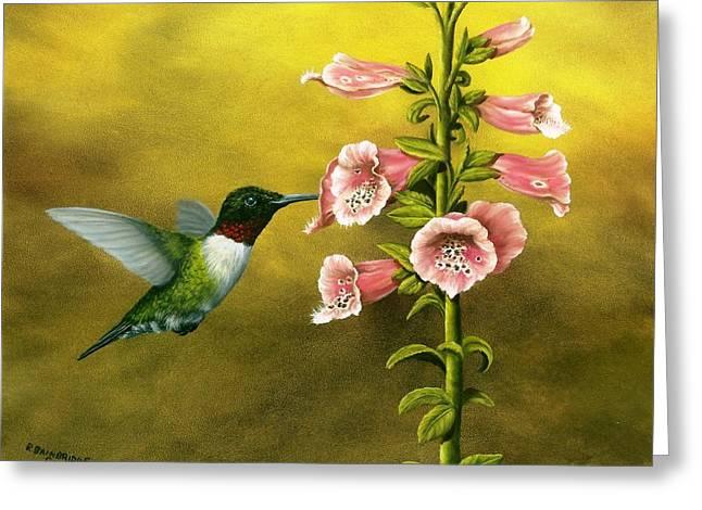 Ruby Throated Hummingbird And Foxglove Greeting Card by Rick Bainbridge