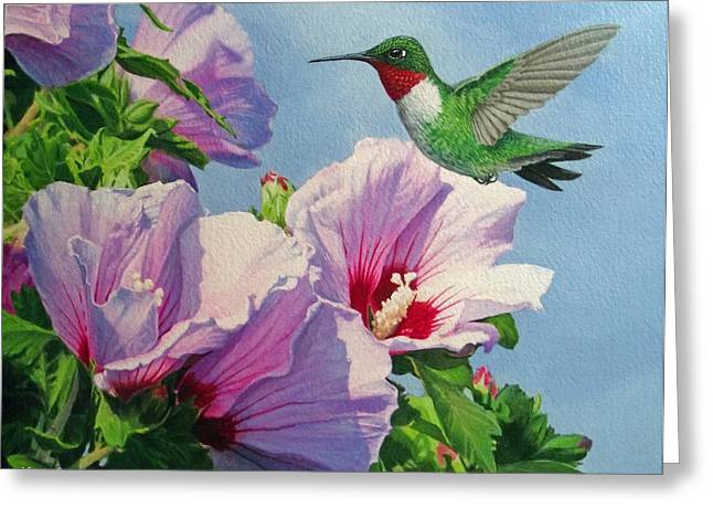 Ruby Greeting Cards - Ruby-Throated Hummingbird Greeting Card by Ken Everett