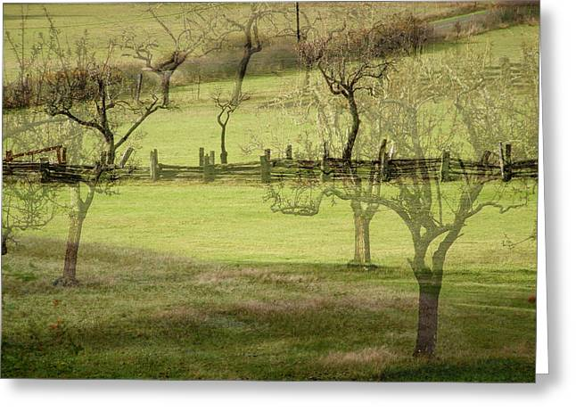 Split Rail Fence Greeting Cards - Ruckle Farm Orchard Greeting Card by Lyn  Perry