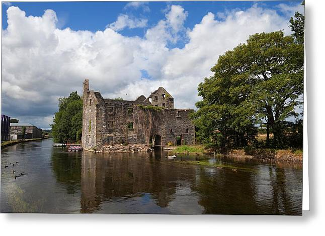 Barrow Greeting Cards - Rudkins Mill On The River Barrow, Muine Greeting Card by Panoramic Images