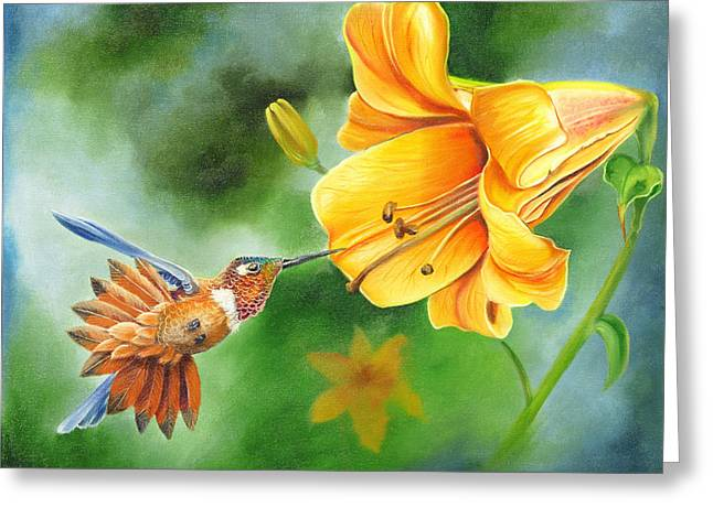 Phyllis Beiser Greeting Cards - Rufous Hummer and the Lily Greeting Card by Phyllis Beiser