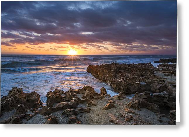 Sunrise On Beach Greeting Cards - Rugged Beauty Greeting Card by Debra and Dave Vanderlaan