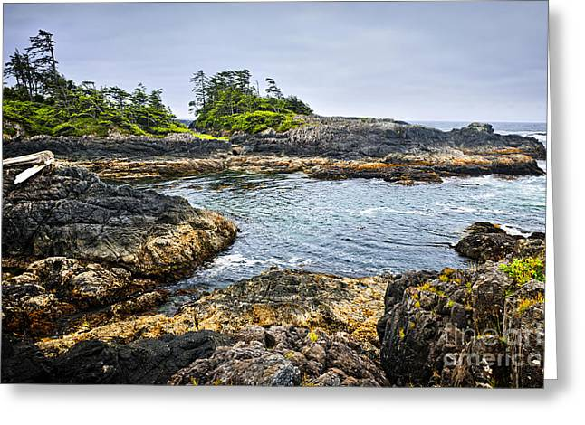 West Vancouver Greeting Cards - Rugged coast of Pacific ocean on Vancouver Island Greeting Card by Elena Elisseeva