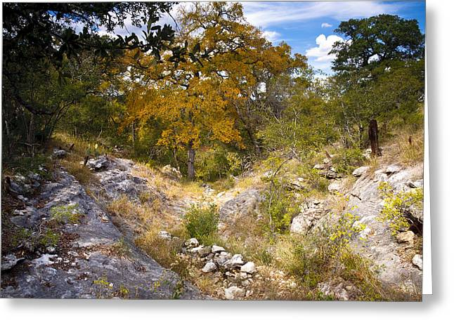 Texas Parks Greeting Cards - Rugged Texas Hill Country Greeting Card by Mark Weaver
