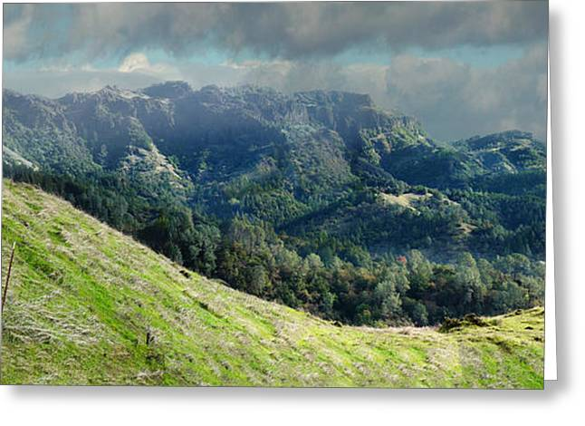 Calistoga Greeting Cards - Ruggedly Wild Greeting Card by Stan Angel