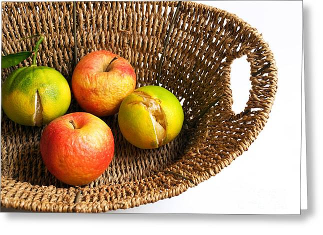 Apple Art Greeting Cards - Ruined fructus Greeting Card by Sinisa Botas