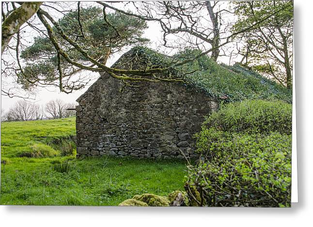 Sligo Greeting Cards - Ruined Irish Cottage Greeting Card by Bill Cannon