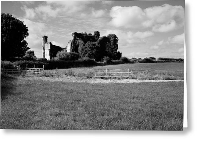 Field. Cloud Greeting Cards - Ruins Of A Castle, Moydrum Castle Greeting Card by Panoramic Images
