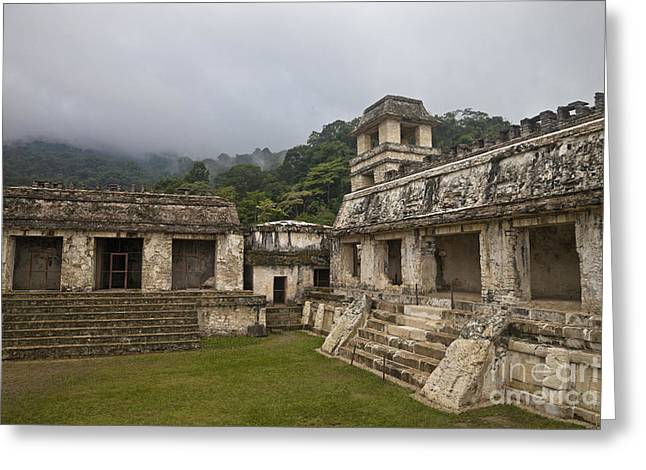 Ancient Ruins Greeting Cards - Ruins Of Palenque Greeting Card by Ellen Thane