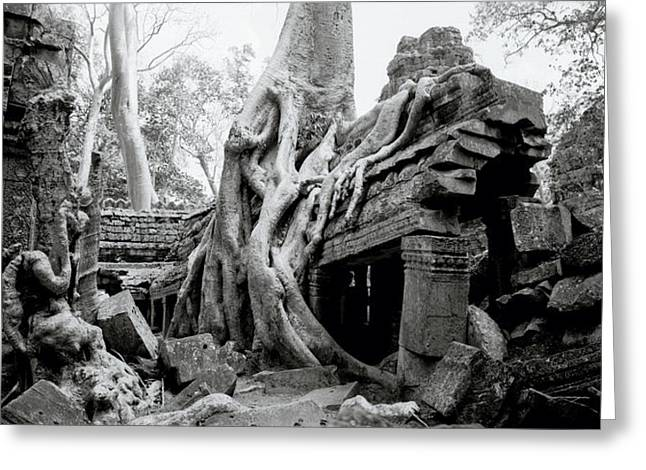 Temple Of Ta Prohm Greeting Cards - Ruins Of Ta Prohm Greeting Card by Shaun Higson