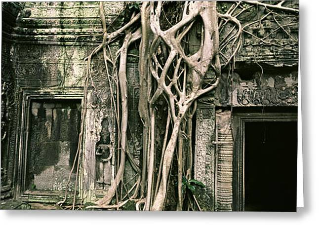Ta Prohm Greeting Cards - Ruins Of Ta Prohm Temple, Angkor Greeting Card by Panoramic Images