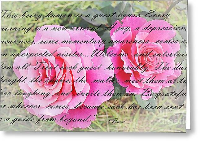 Human Malice Greeting Cards - Rumi Quote - Roses - Guide Greeting Card by Barbara Griffin