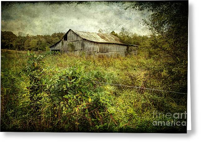 Overgrown Greeting Cards - Run Down Barn Greeting Card by Joan McCool