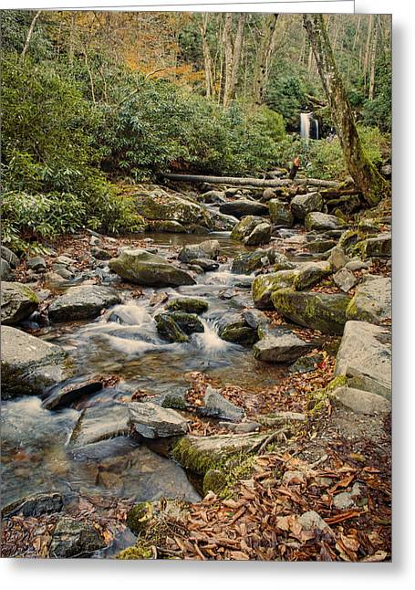 Rivers In The Fall Greeting Cards - Run Off Greeting Card by Heather Applegate