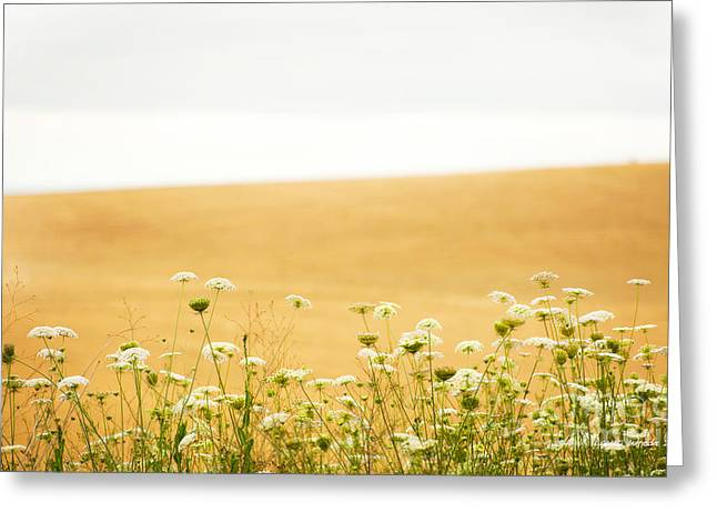 Laura Wrede Greeting Cards - Run With Me Through a Field of Wild Flowers Greeting Card by Artist and Photographer Laura Wrede