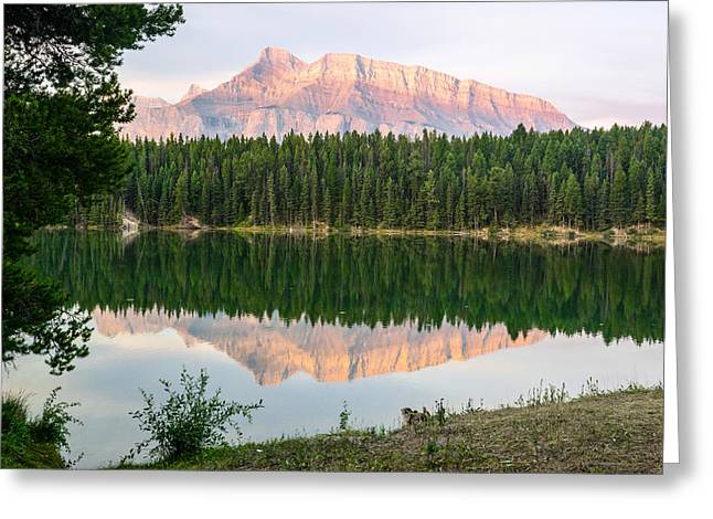 Rundle Greeting Cards - Rundle Mountain at Sunrise Greeting Card by Douglas Barnett