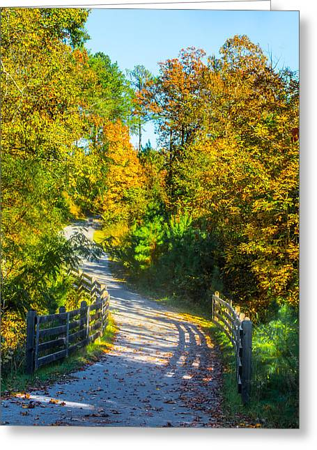 Jogging Greeting Cards - Runners Path In Autumn Greeting Card by Parker Cunningham