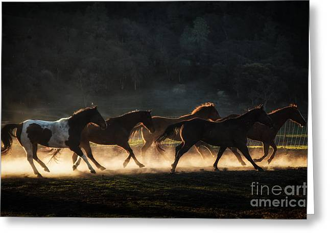 Ranch Greeting Cards - Running Greeting Card by Ana V  Ramirez