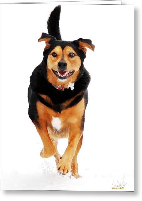 Dog Running. Greeting Cards - Running Dog Art Greeting Card by Christina Rollo