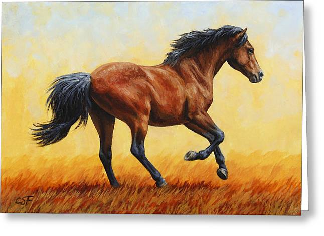 Horses Running Greeting Cards - Running Horse - Evening Fire Greeting Card by Crista Forest