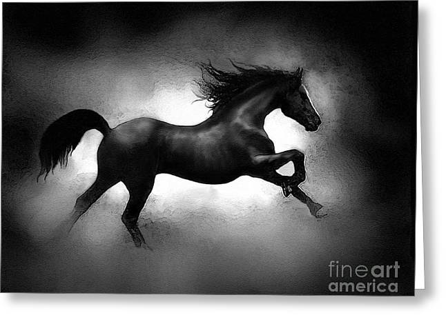 Running Horse Greeting Card by Robert Foster
