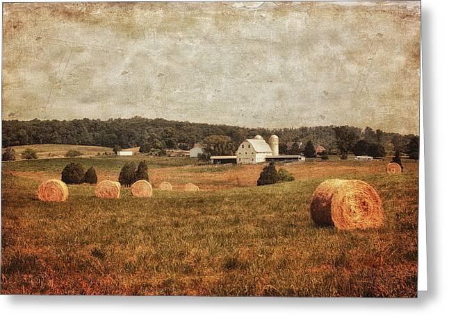Granary Greeting Cards - Rural America Greeting Card by Kim Hojnacki