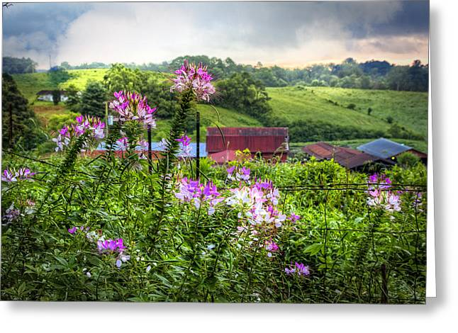 Tennessee Barn Greeting Cards - Rural Garden Greeting Card by Debra and Dave Vanderlaan